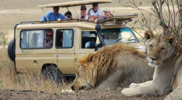 Safari - Aberdare Range