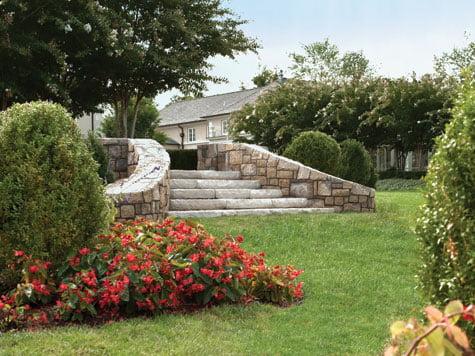 Backyard - Landscape