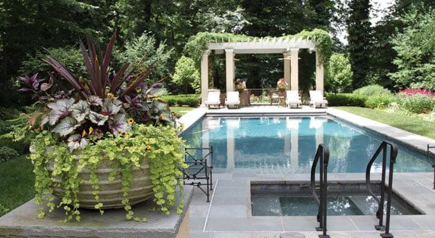 Swimming Pool - Garden
