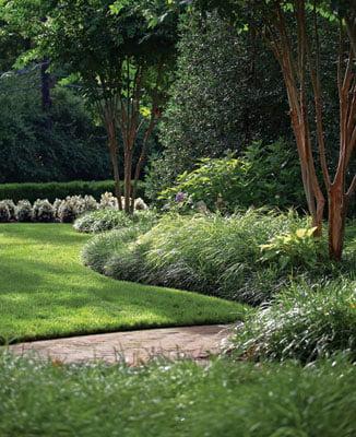 Lawn - Yard