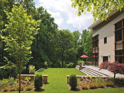 Backyard - Lawn