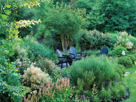 Backyard - Garden