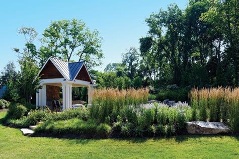 Backyard - Real Estate