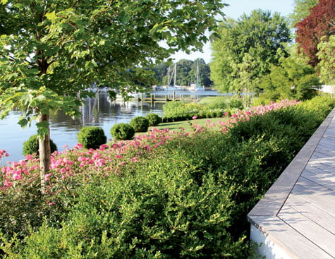 Water feature - Botanical garden