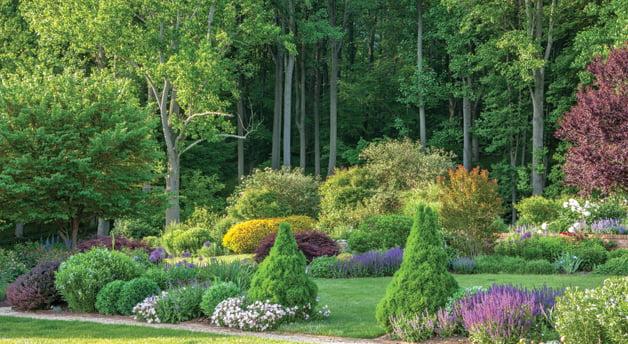 RHS Garden Wisley - Landscape