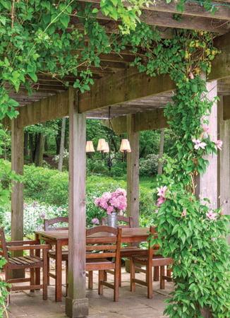 Pergola - Garden
