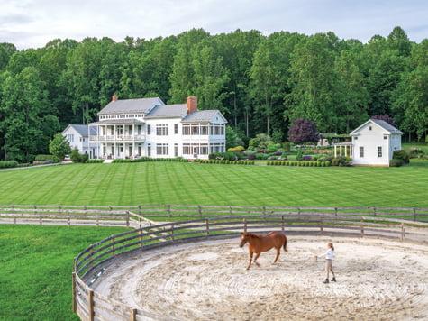 Horse - Farm