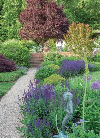 Garden - Shrub