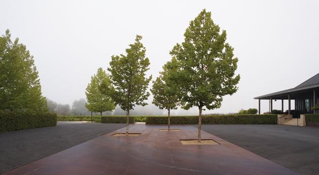 Architecture - Landscape architect