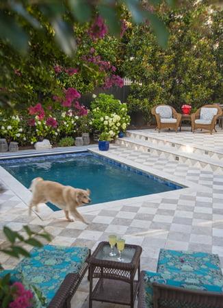 Swimming pool - Gardenwise Inc.