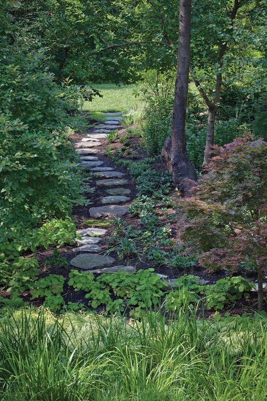 Planted Earth Landscaping Inc - Vegetation