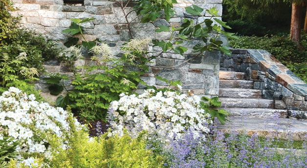 Landscape design - Garden
