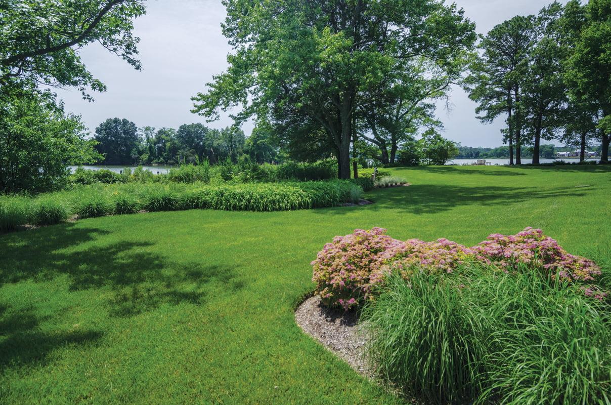 Garden - Lawn