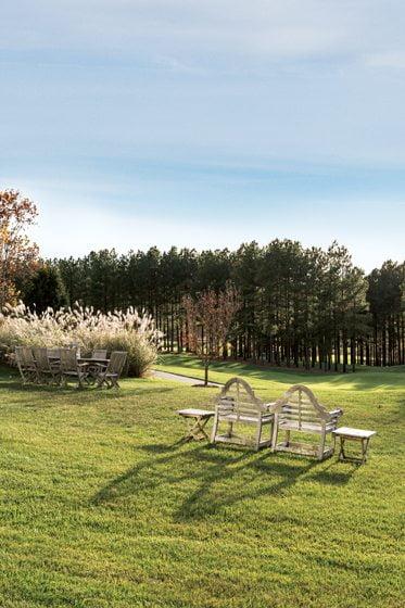 Grasses - Rural area