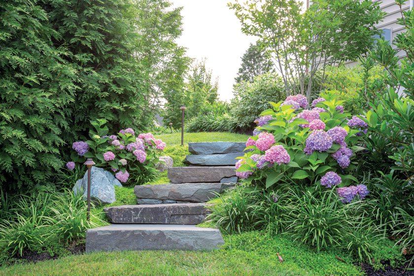 Garden - Garden design