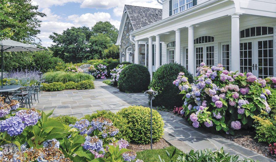 Patio - Garden