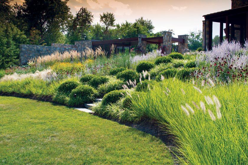 Landscape - Landscape design
