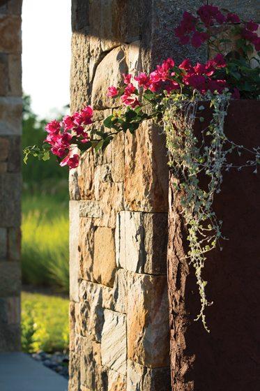 Floral design - Annapolis