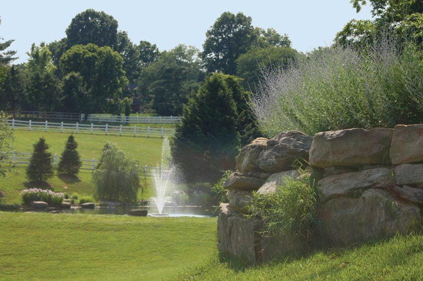 Fountain - Nature