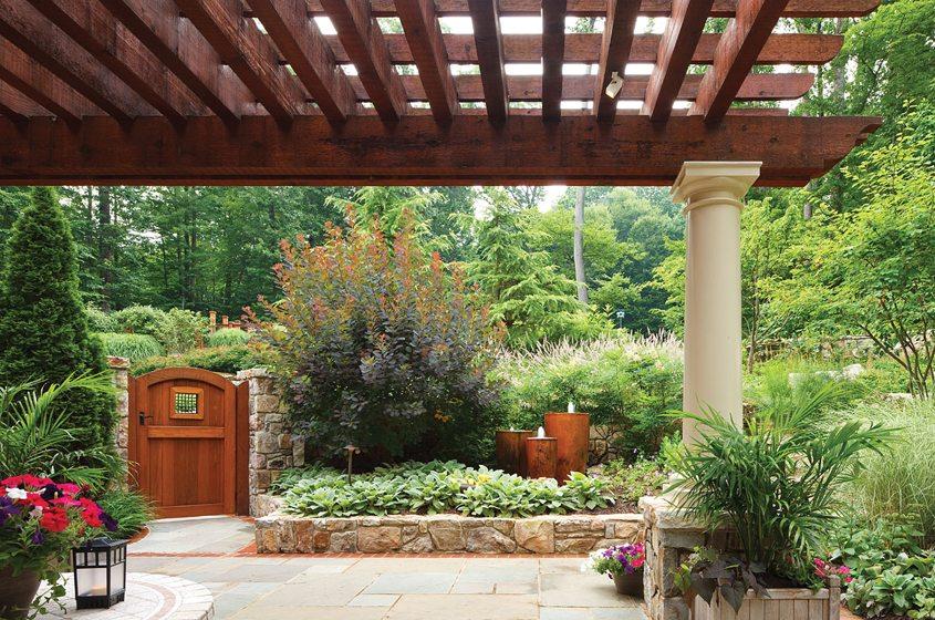 Backyard - Yard