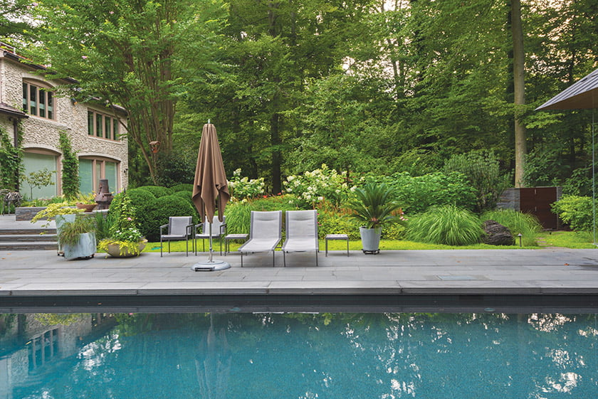 Hydrangeas, ferns and perennials surround backyard pool oasis.