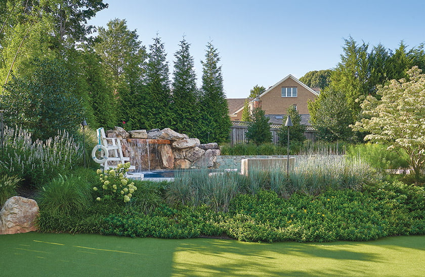 Ornamental grasses around pool