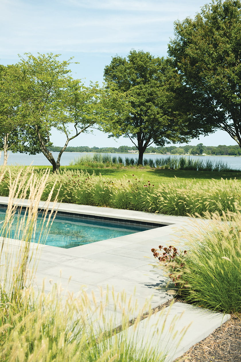 pool-with-coneflowers-and-fountain-grass