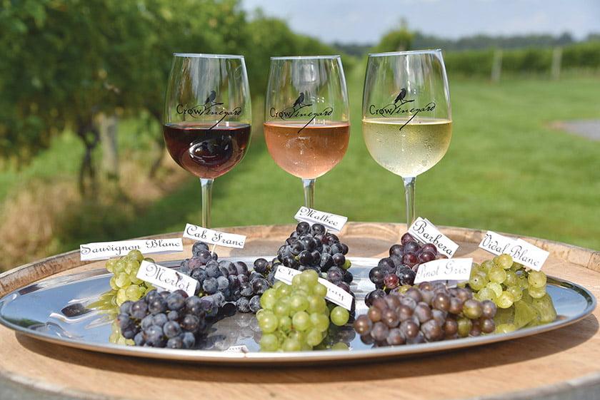 wine-tastings-crow-vineyard-winery