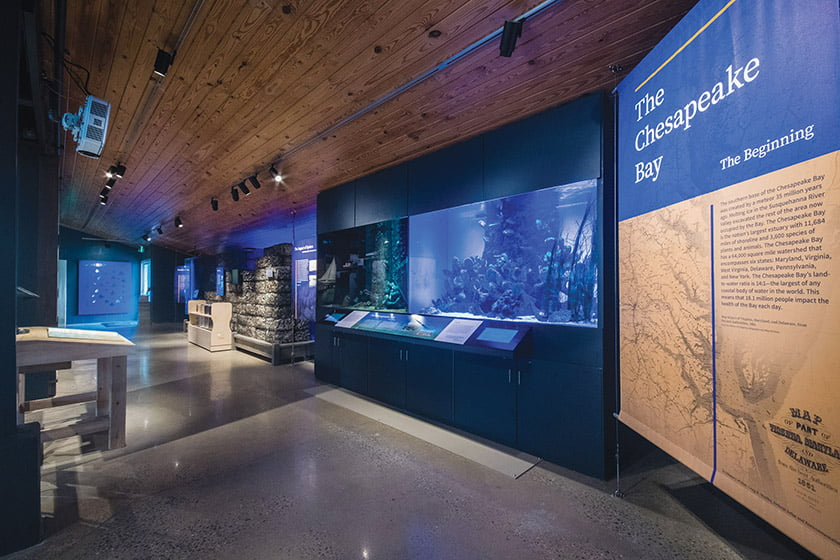 annapolis-maritime-museum-park-aquarium