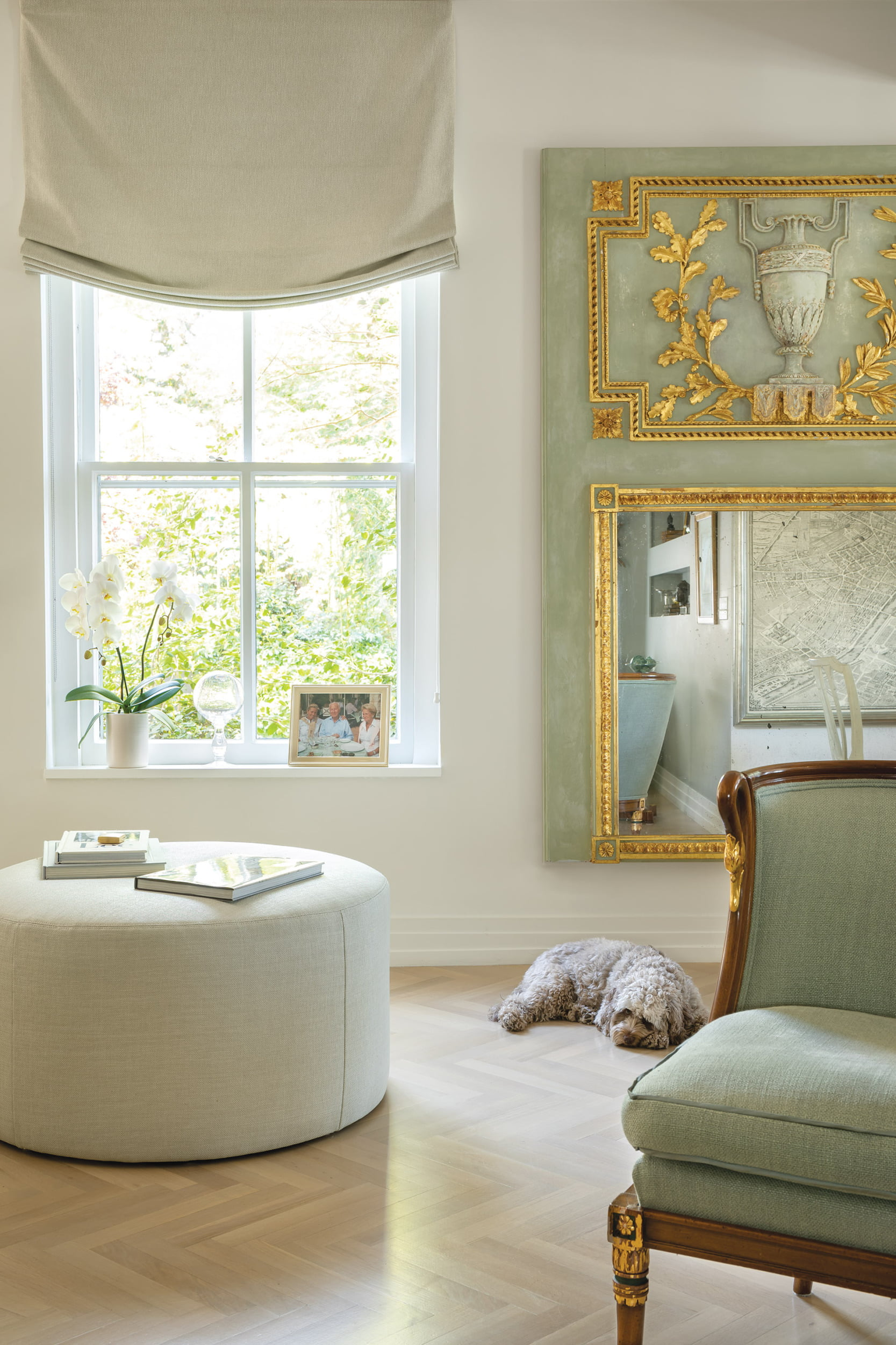 Designer's dog, Ella, relaxes near custom ottoman that separates the living and dining areas