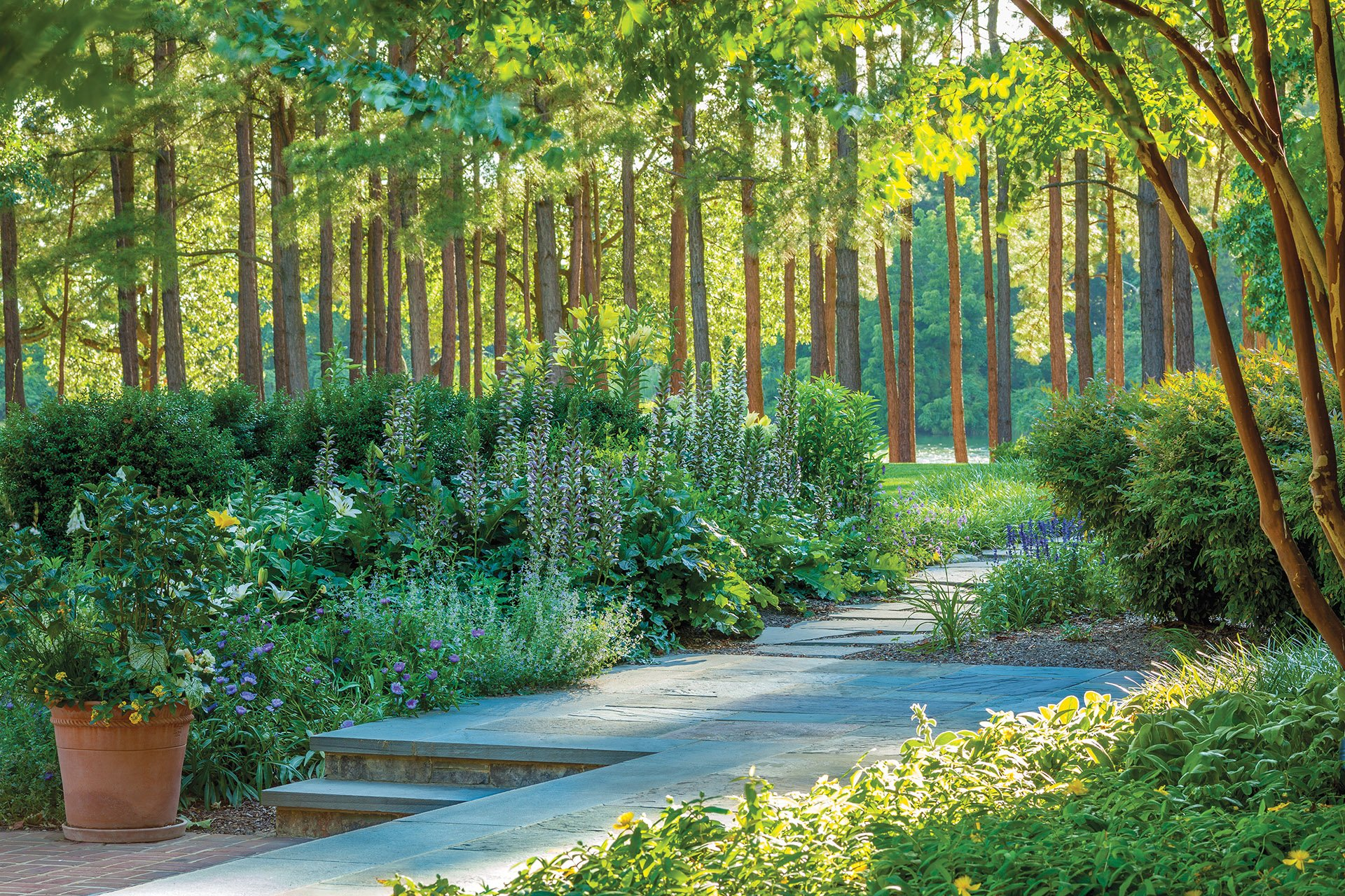 Bluestone walkway flanked by lush perennials including acanthus, lilies, coneflowers and nepeta.
