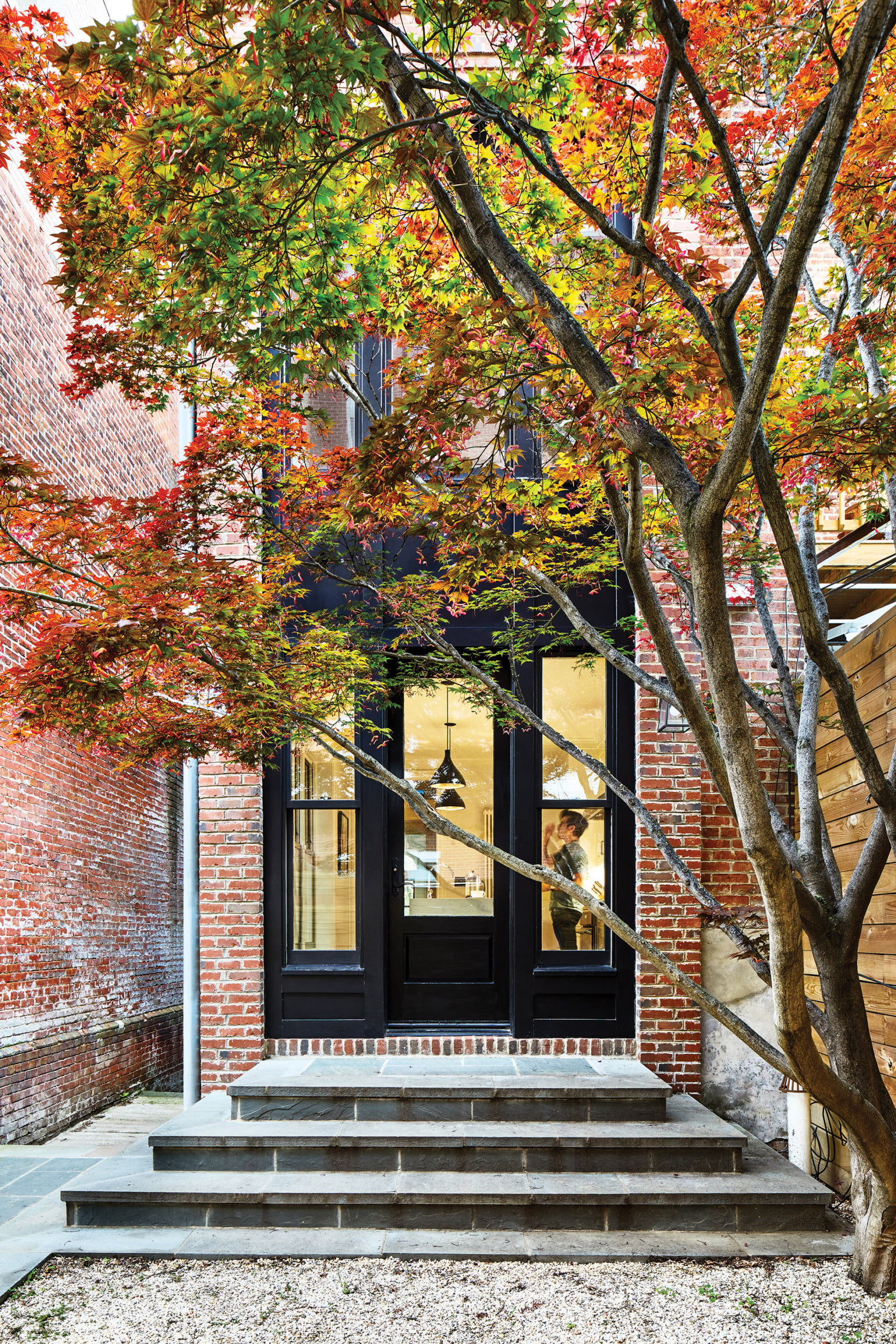Rear garden in a Shaw row house remodeled by architect Josh Hill.